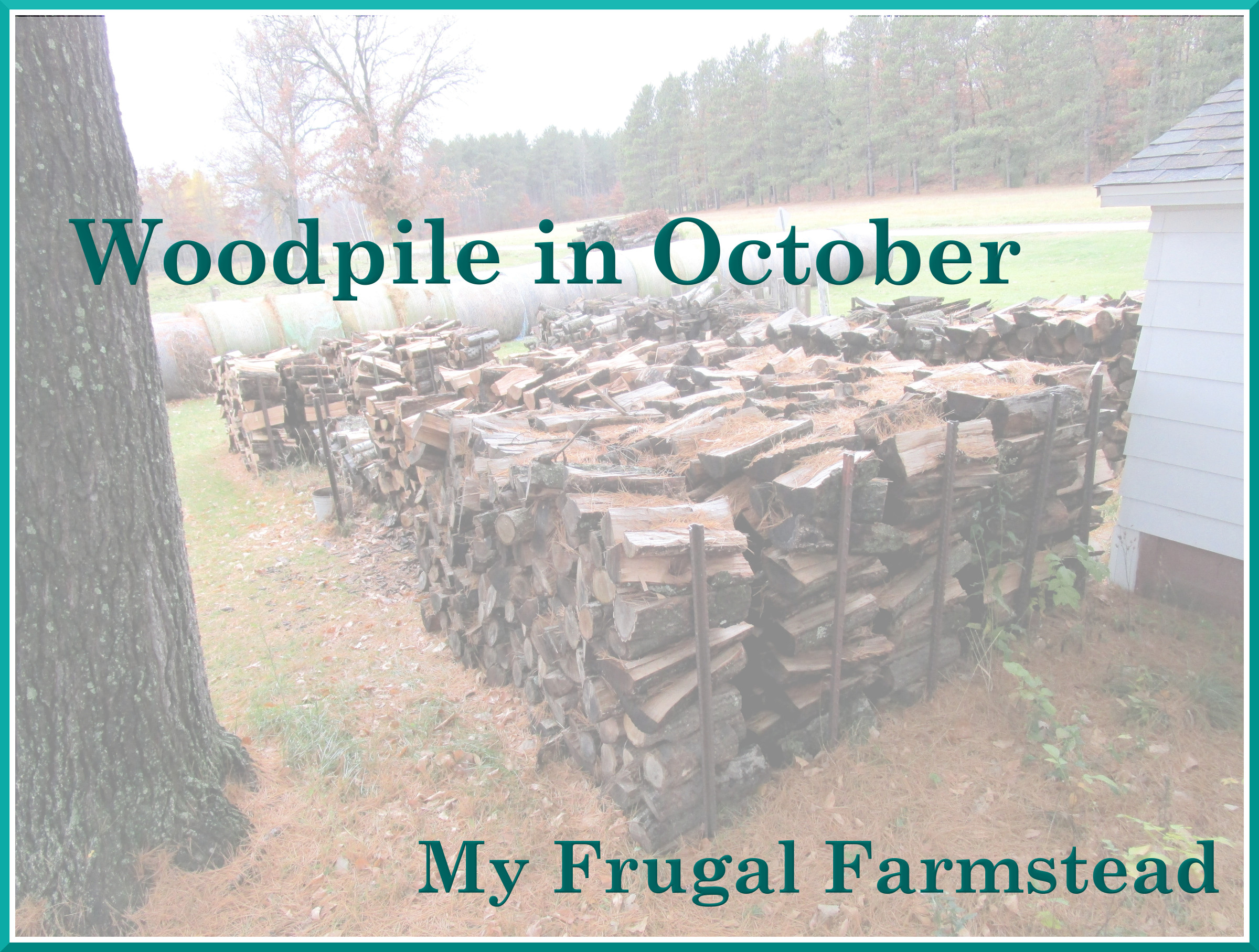 Woodpile in October